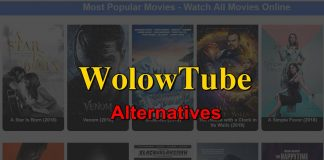 wolowtube alternatives