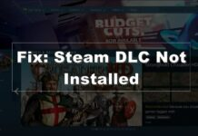 steam dlc not installed