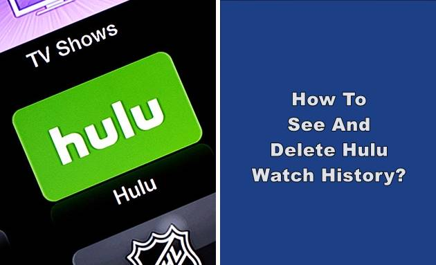 see and delete hulu watch history